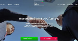 THE オプション